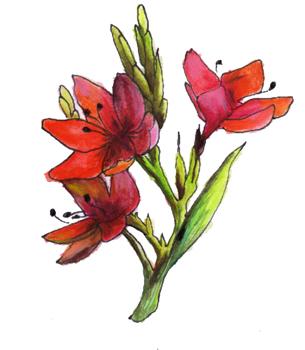Document sans nom - Dessin de fleurs a imprimer en couleur ...