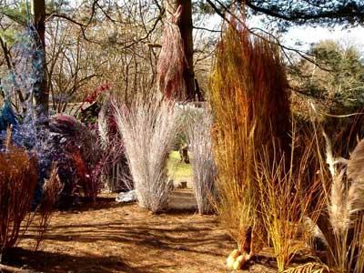 Id es d co pour son jardin visite guid e d 39 un jardin tr s - Idee arbre genealogique original ...